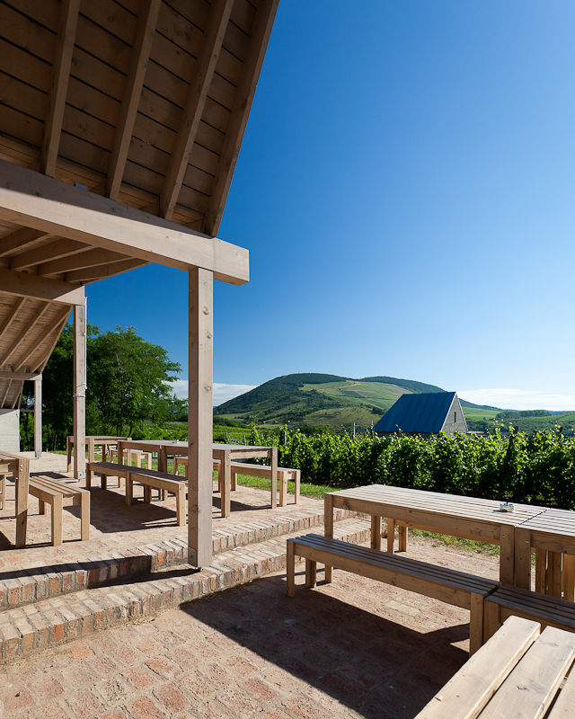 53f3f9d5c07a80096200050a_wine-terrace-and-spa-gereben-mari-n-architects_aes_04