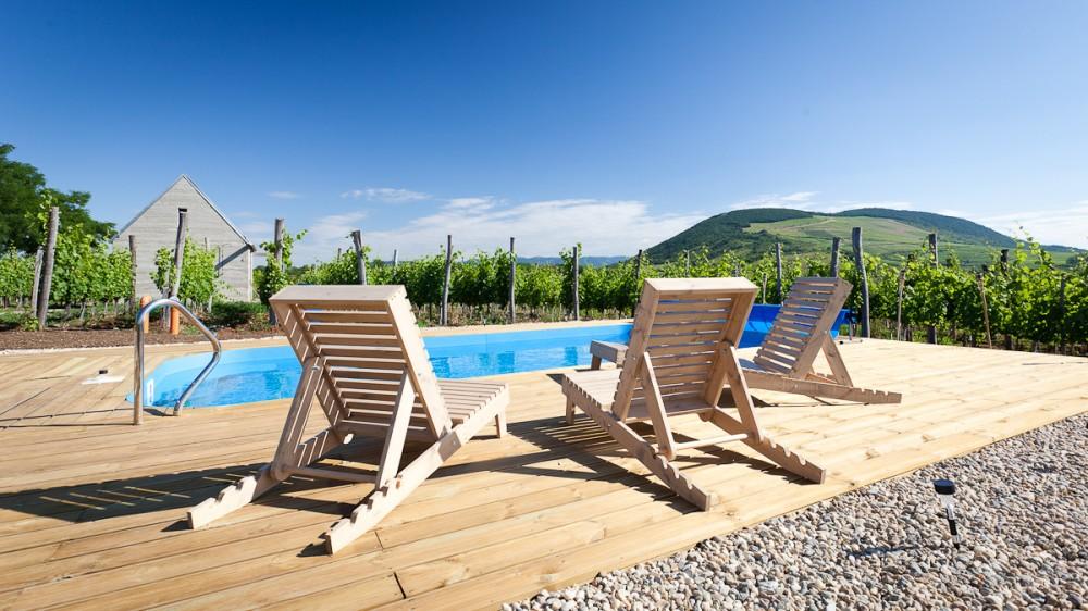 53f3fa19c07a80388e000541_wine-terrace-and-spa-gereben-mari-n-architects_aes_09-1000x562