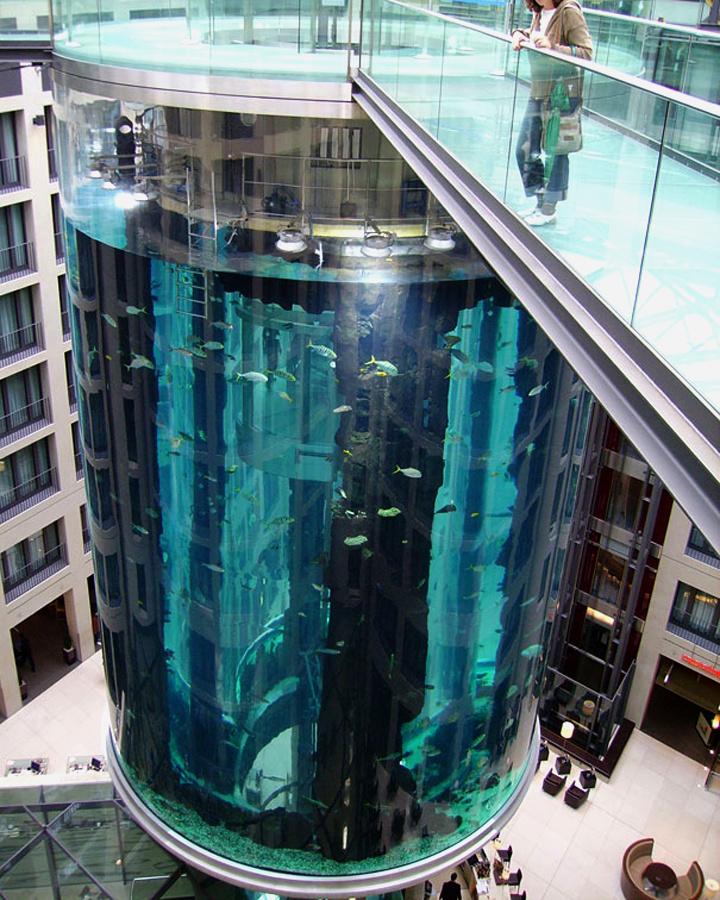 AquaDom-in-Radisson-Blu-Hotel-Berlin-Germany-09-