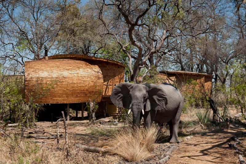 safari-lodge_080515_01