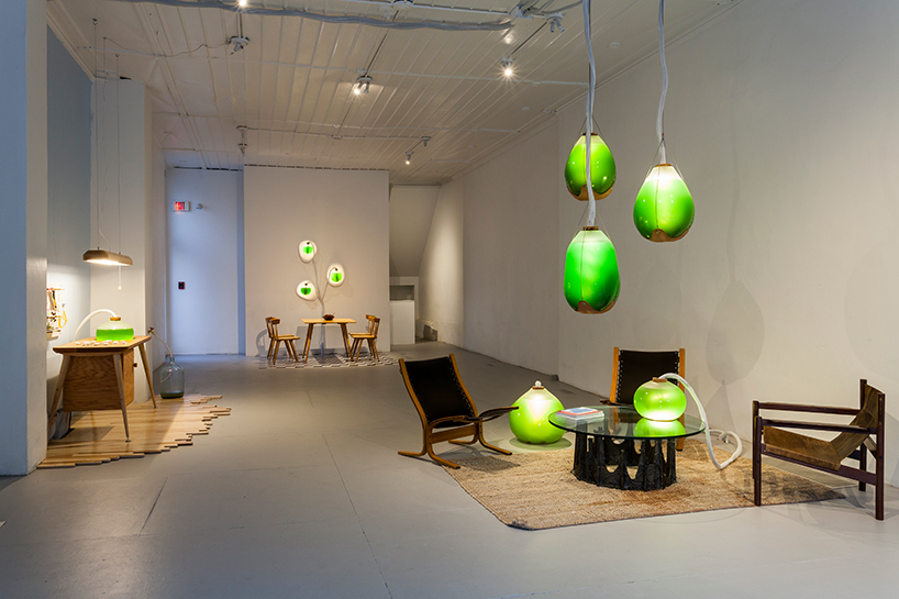 living-thing-photosythetic-furniture-designboom-02