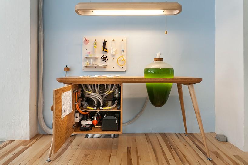 living-thing-photosythetic-furniture-designboom-06-818x545