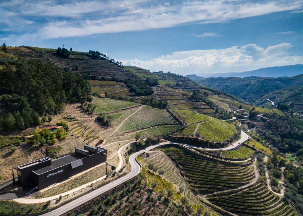 Alves-de-Sousa_Quinta-da-Gaivosa-estate_winery_Belem-Lima_Baixo-Corgo_Portugal_dezeen_1568_0