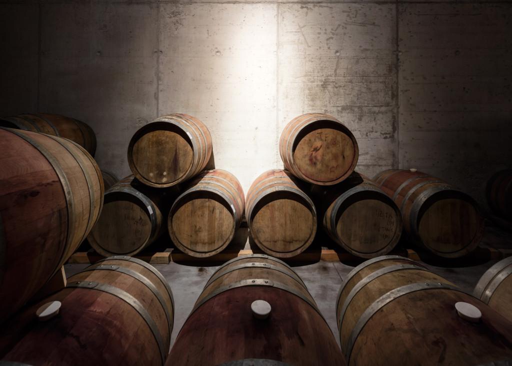 Alves-de-Sousa_Quinta-da-Gaivosa-estate_winery_Belem-Lima_Baixo-Corgo_Portugal_dezeen_1568_18