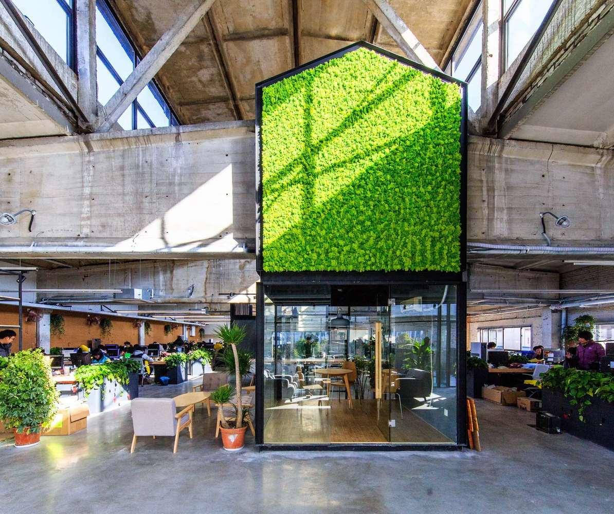 Antao HQ setzt auf Pflanzen